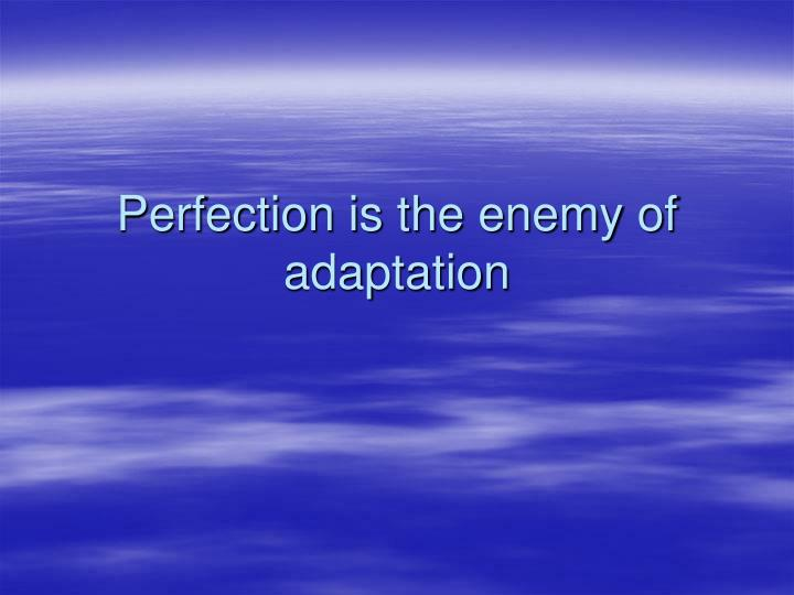 Perfection is the enemy of adaptation