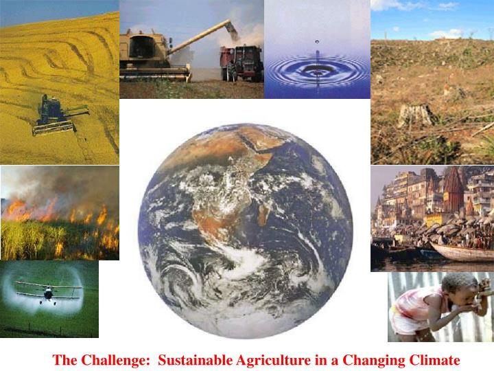 The Challenge:  Sustainable Agriculture in a Changing Climate