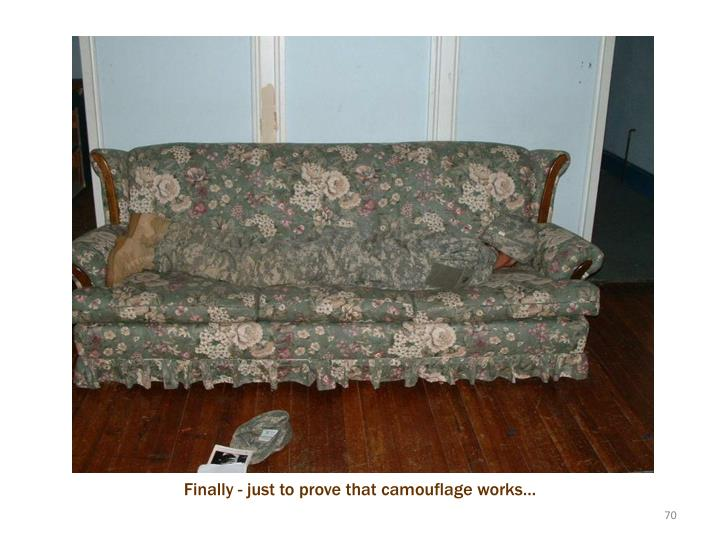 Camouflage works