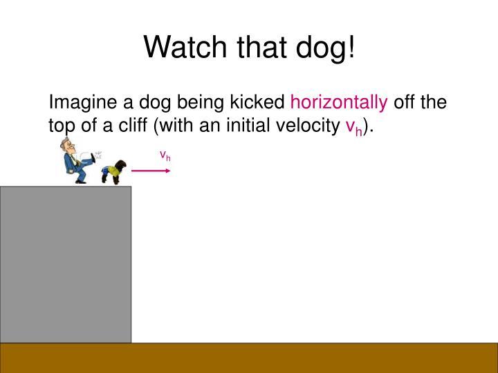 Watch that dog!