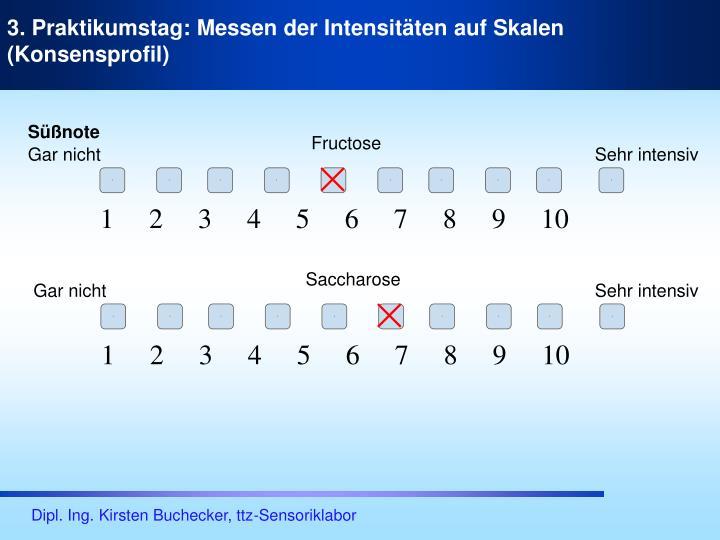 3. Praktikumstag: Messen der Intensitäten auf Skalen (Konsensprofil)
