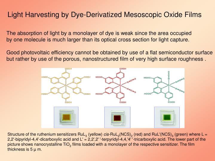 Light Harvesting by Dye-Derivatized Mesoscopic Oxide Films