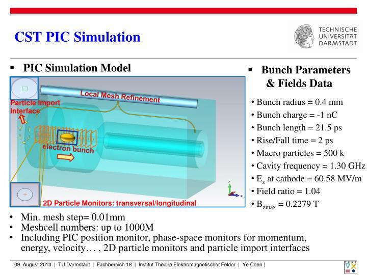 CST PIC Simulation