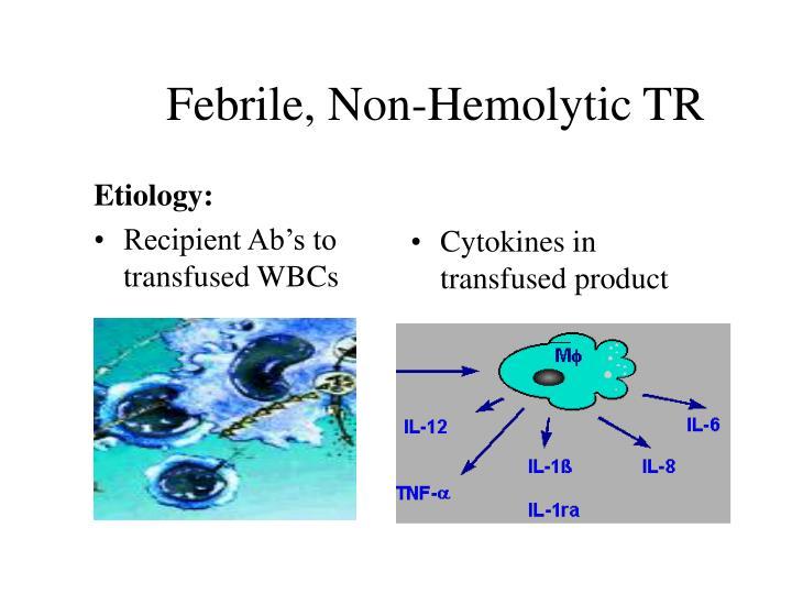 Febrile, Non-Hemolytic TR