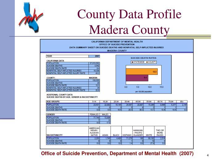 County Data Profile