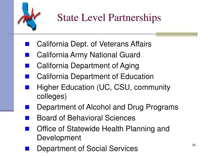 State Level Partnerships
