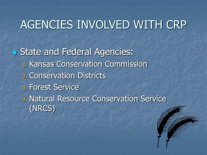 AGENCIES INVOLVED WITH CRP