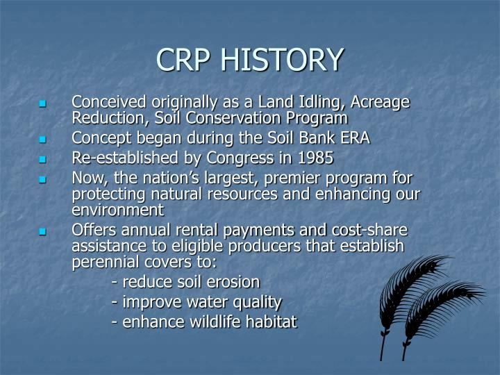 CRP HISTORY