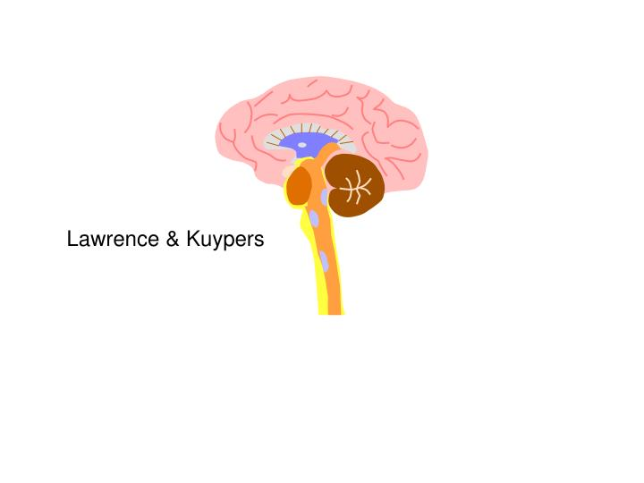 Lawrence & Kuypers