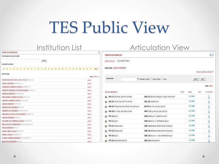 TES Public