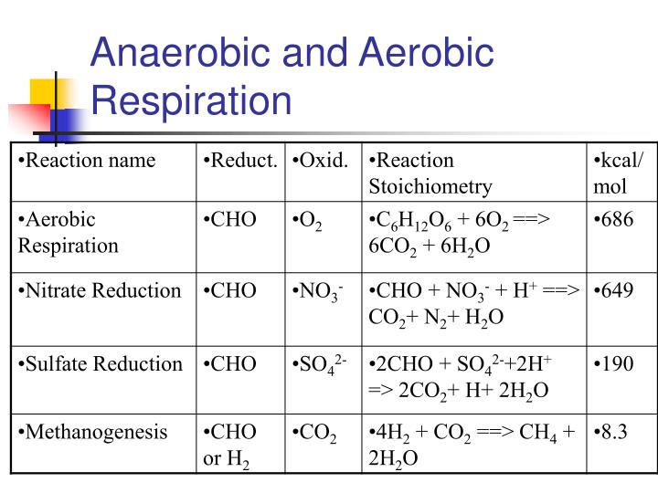 Anaerobic and Aerobic Respiration