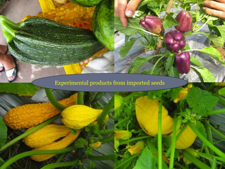 Experimental products from imported seeds