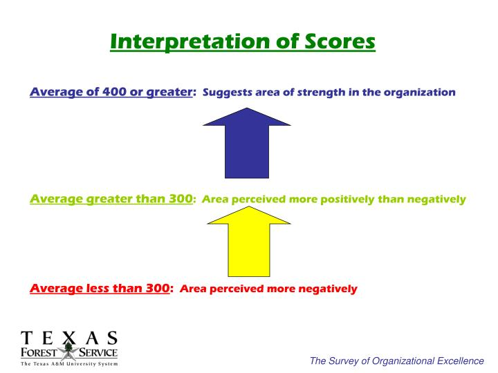 Interpretation of Scores