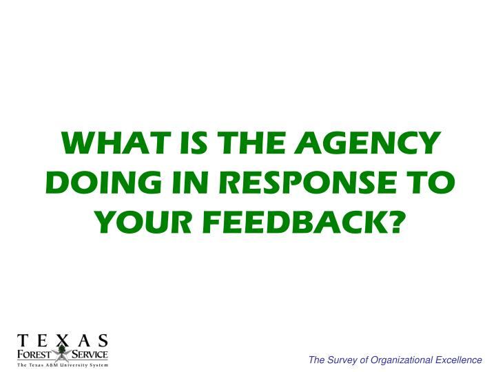 WHAT IS THE AGENCY DOING IN RESPONSE TO YOUR FEEDBACK?