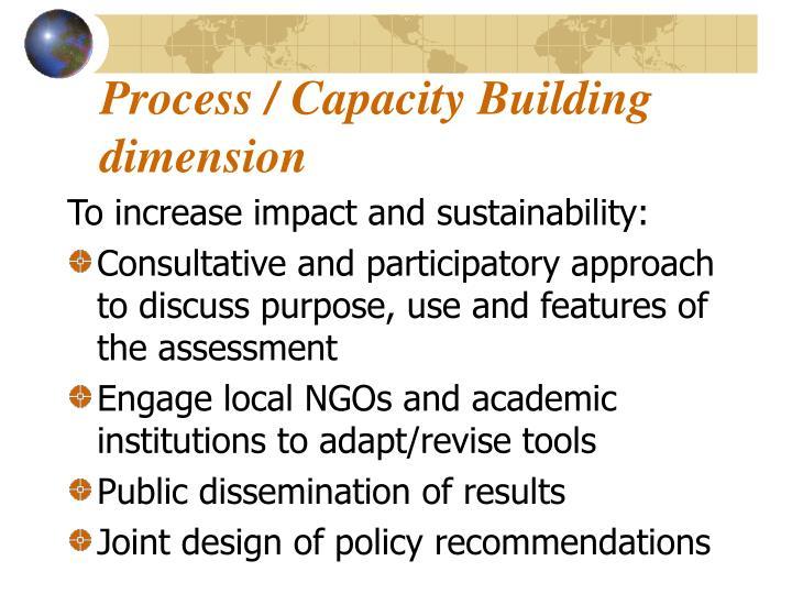 Process / Capacity Building dimension