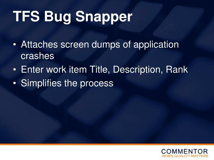 TFS Bug Snapper
