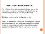 recovery peer support