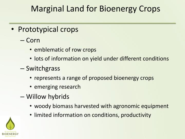 Prototypical crops