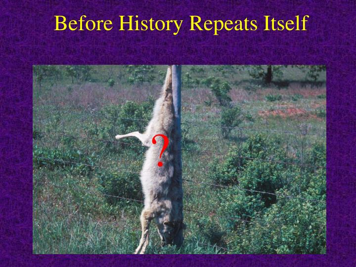 Before History Repeats Itself