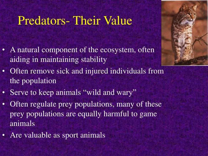 Predators- Their Value