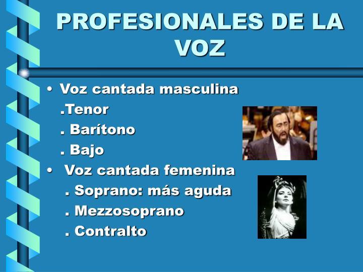 PROFESIONALES DE LA VOZ