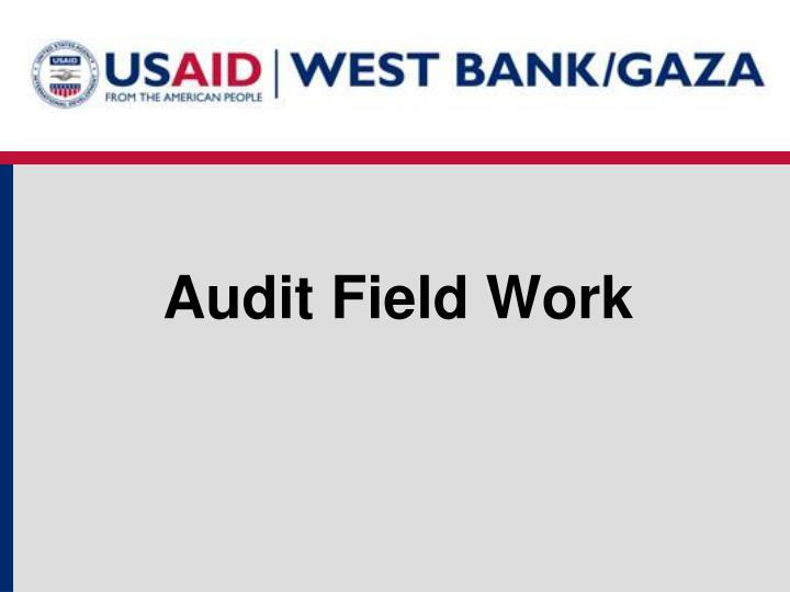 Audit Field Work