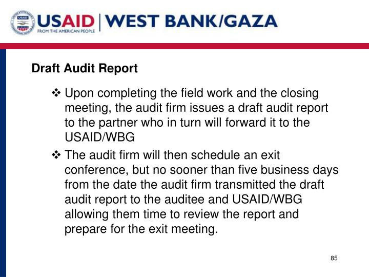 Draft Audit Report
