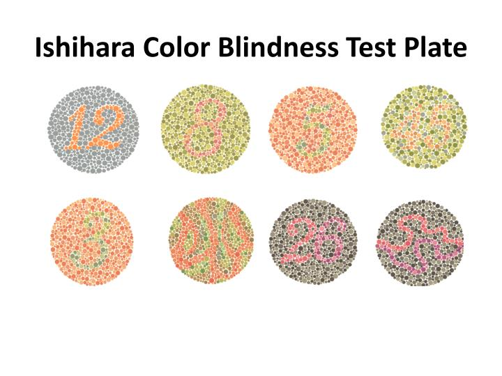 Ishihara Color Blindness Test Plate
