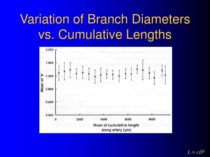 Variation of Branch Diameters vs. Cumulative Lengths