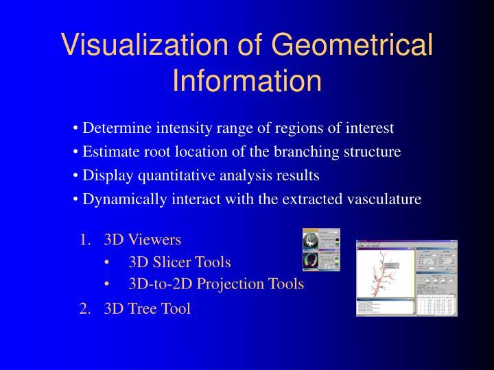 Visualization of Geometrical Information