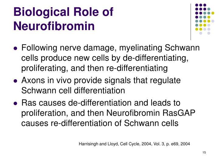 Biological Role of Neurofibromin