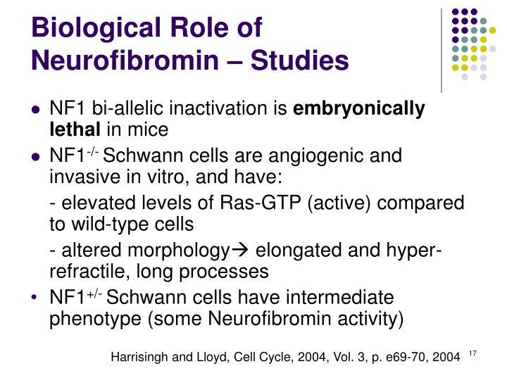 Biological Role of Neurofibromin – Studies