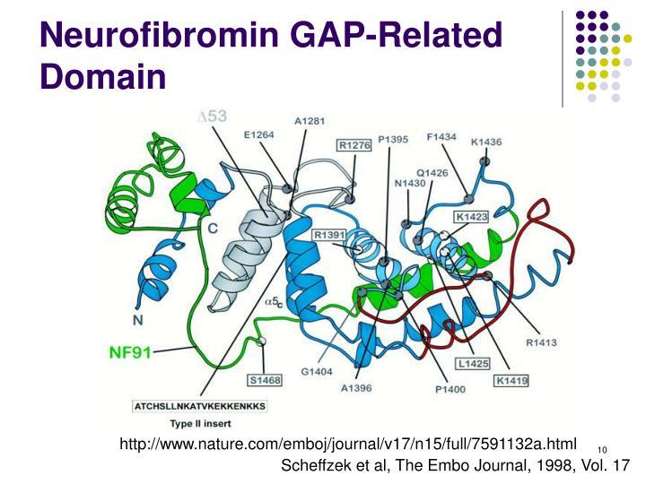 Neurofibromin GAP-Related Domain
