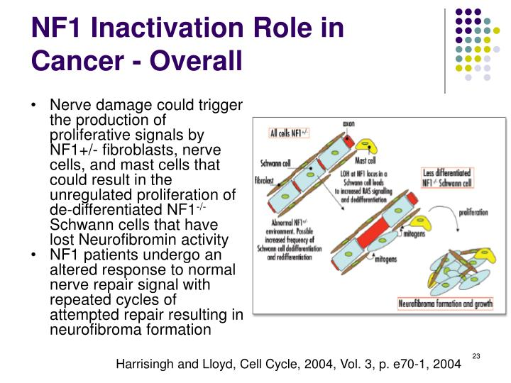 NF1 Inactivation Role in Cancer - Overall