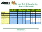 climate risk opportunity selected industries