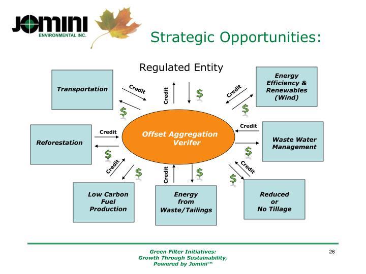 Strategic Opportunities: