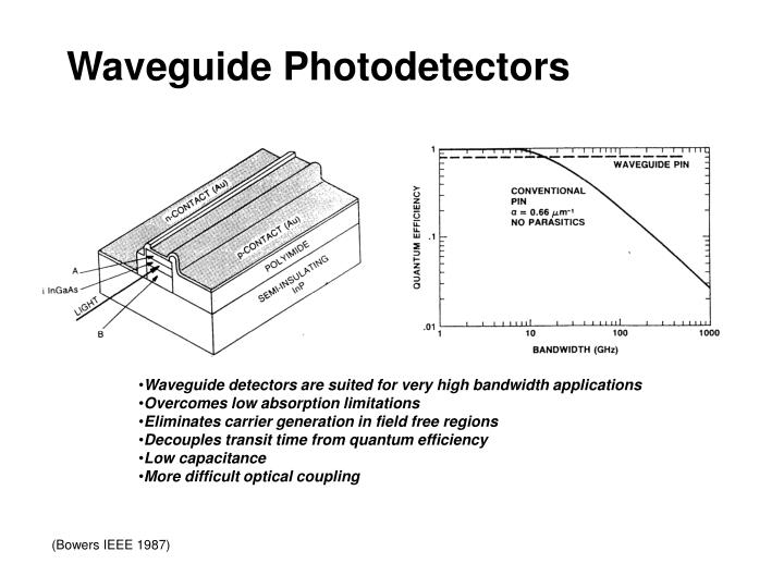 Waveguide Photodetectors