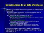 caracter sticas de un data warehouse1