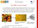 the dna in every mouth