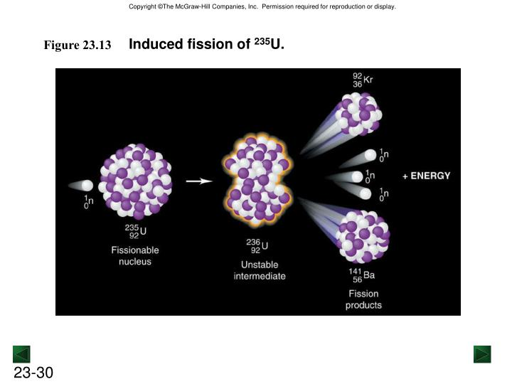 Induced fission of