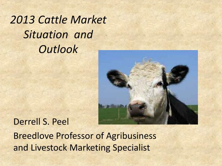 2013 cattle market situation and outlook