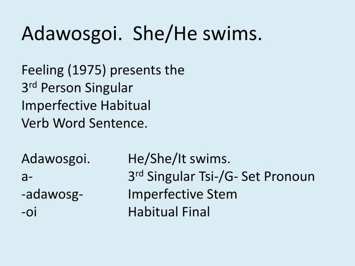 Adawosgoi