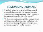 fumonisins animals3