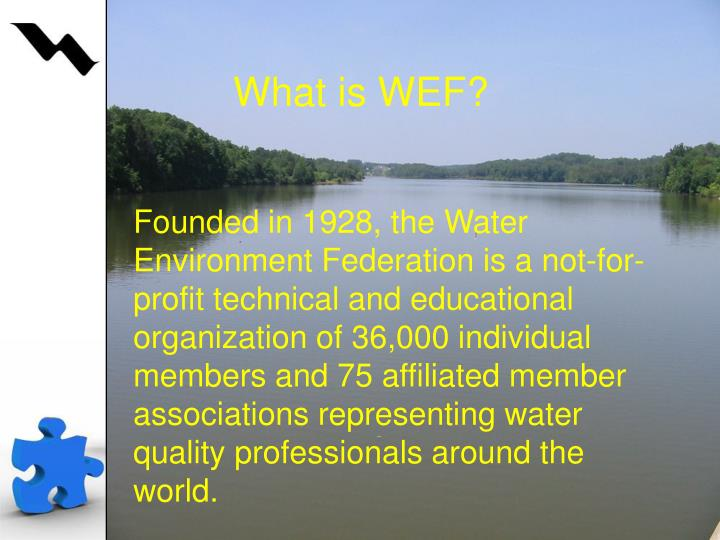What is WEF?