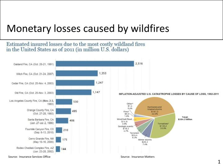 Monetary losses caused by wildfires