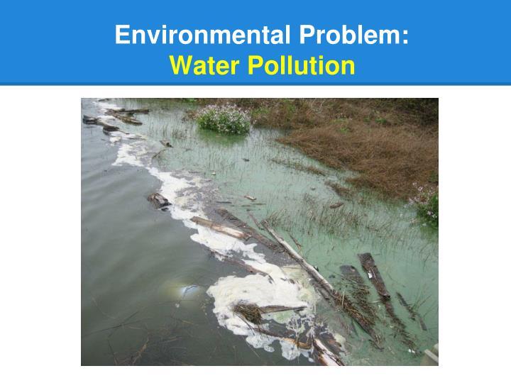 Environmental Problem: