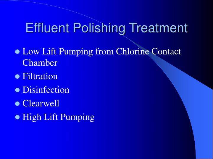 Effluent Polishing Treatment