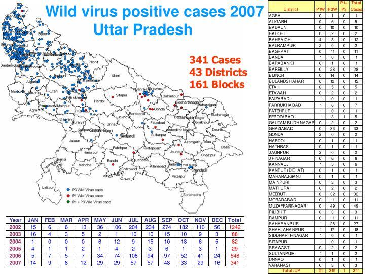 Wild virus positive cases 2007