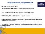 international cooperation1