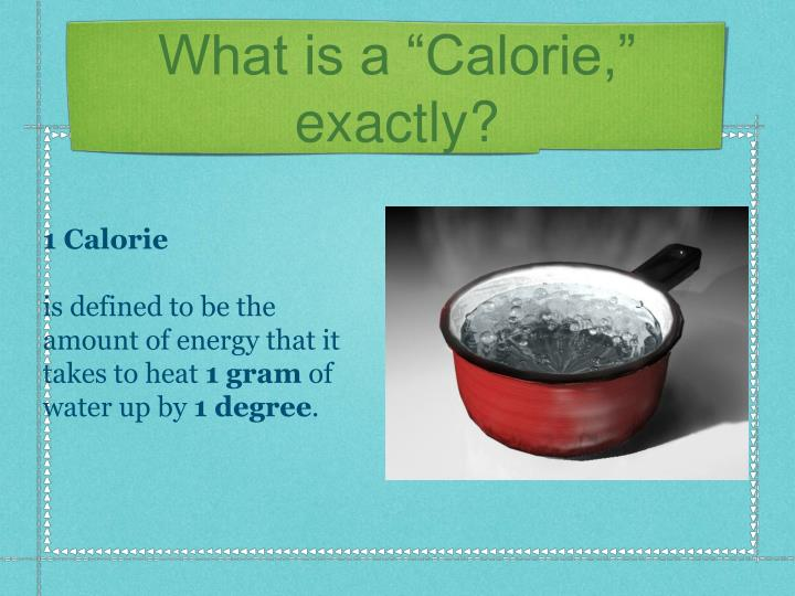 """What is a """"Calorie,"""" exactly?"""